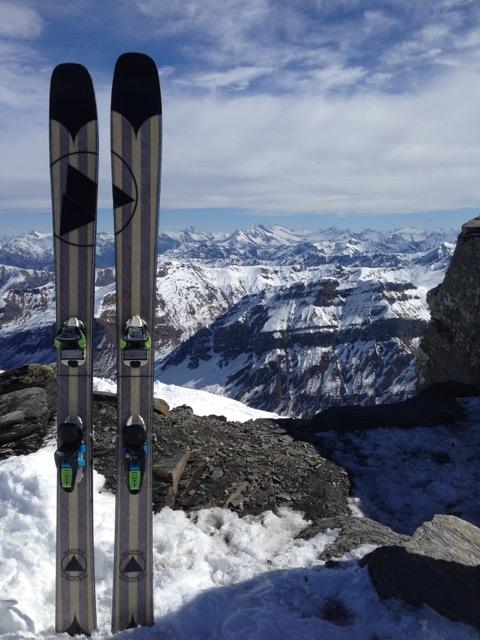 paulownia skis