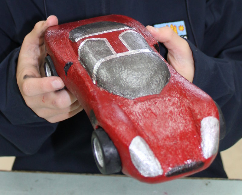 Paulownia cars